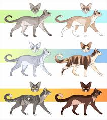 cats mating best warrior cats mating fanfic ideas only on s erin