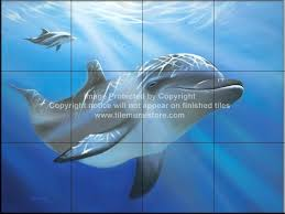 86 best dolphins mermaids images on dolphins marine