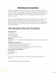 A Sample Resume For Job Best Easy Examples New Basic