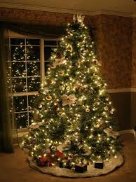Christmas Tree Amazon Local by Best 25 Xmas Window Lights Ideas On Pinterest Diy Xmas