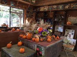 Best Pumpkin Patch Near Roseville Ca by O U0027halloran U0027s Apple Trail Ranch 58 Photos U0026 16 Reviews Farmers