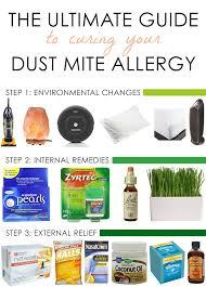 Best 25 Allergy home reme s ideas on Pinterest