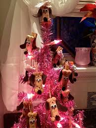 Christmas Tree Cataract Seen In by Bassethoundtown Blog Vlog 2011 December