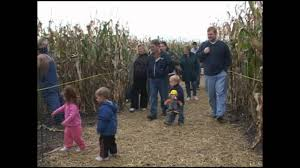 Pumpkin Farms Near Milwaukee by Swan Pumpkin Farm Racine Wi Youtube