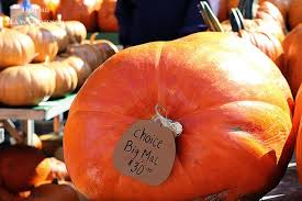 Pumpkin Festival Circleville Ohio 2 by The Circleville Pumpkin Show A Festival Fit For A King House Of