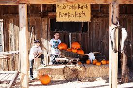 Old Mcdonalds Pumpkin Patch Scottsdale by Pumpkin Patching U2014 All For The Boys