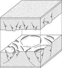 Kinematics Of Polygonal Fault Systems Observations From The Northern North Sea