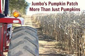 Jumbos Pumpkin Patch Groupon by Jumbo U0027s Pumpkin Patch More Than Just Pumpkins Housewives