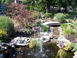 Natural Small Pond Ideas At Your Backyard – Univind.com Ese Zen Gardens With Home Garden Pond Design 2017 Small Koi Garden Ponds And Waterfalls Ideas Youtube Small Backyard Design Plans Abreudme Backyard Ponds 25 Beautiful On Pinterest Fish Goldfish Update Part 1 Of 2 Koi In For Water Features Information On How To Build A In Your Indoor Fish Waterfall Ideas Eadda Backyards Terrific