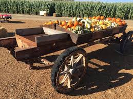 El Paso Pumpkin Patch sacramento u0027s best halloween pumpkin patch haunted pumpkin patch