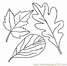 Cool Design Leaves Coloring Pages Printable Leaf Page 08