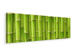 natur leinwandbilder bambus