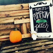 Best Pumpkin Patch In Baton Rouge by Plum Street Snoballs Home Facebook