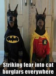 cat batman costume these 30 costumes will put a smile on your