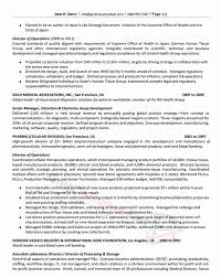 Great Resumes Fast Executive Resume Samples Of From Good To