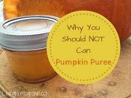 Pumpkin Puree Vs Pumpkin Pie Filling by Living Homegrown