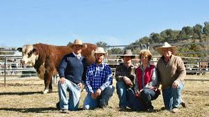 100 Mary Ann Thompson Lotus Herefords All Sold Topping At 26000 The Land