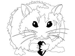 Hamster Coloring Pages For Kids