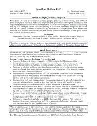 It Manager Resume Examples Technical