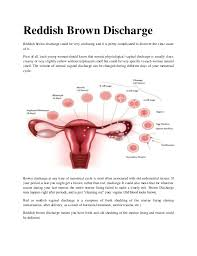 Uterus Lining Shedding Between Periods by Reddish Brown Discharge