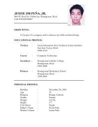 Curriculum Vitae Sample Format Malaysia New Resume Templates Stupendous For Job Application