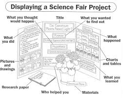 Science Fair Project Board Set Up