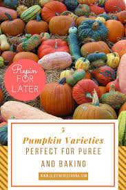 Types Of Pumpkins For Baking by Fruits Archives Gluten Free Farina