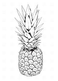 Pineapple Royalty Free Vector Clip Art Image 1945 – RFclipart