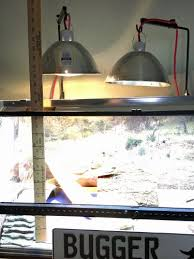 basking bulb proper wattage for juveniles bearded dragon org