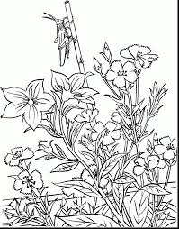 Unbelievable Adult Garden Coloring Pages With And Games