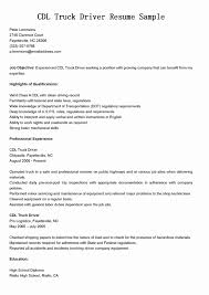 Resume For Driver In Dubai Fresh Term Papers Sale Buy An Essay Line Without Being Scammed