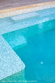 Npt Pool Tile Palm Desert by 51 Best Pool Ideas Images On Pinterest Pool Ideas Pool Coping