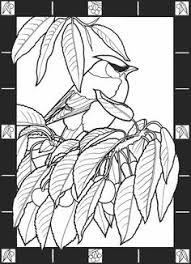 Freebie Hummingbird Image