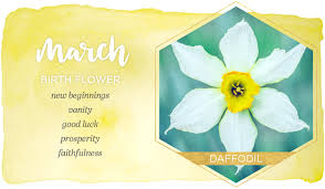 March Birth Flower: Daffodil | Ftd Flowers Coupon 50 Off Code 2016 2359 Command Codes Bmfol And Bmfor Internal Revenue Service Ftd Valentines Flowers Coupon Code 15 Sets Of Free Printable Love Coupons Templates Fast Coupons By Greg Mont Issuu Lily Meaning Symbolism Ftd Promo Code 2016 Th Thy Birthday Best Sellers Decor Flowerama For Home Ideas Biabdorg New Leaf Bouquet In Playa Del Rey Ca Florist Resource Guide Directory 20 Off Mattressman Discount Codes Wethriftcom