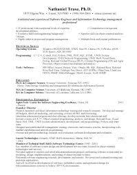 Software Developer Resume Example Program Engineer Format Free Download