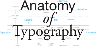 The Terminology Of Typography