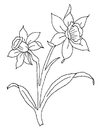 For Kids Daffodils Symbols