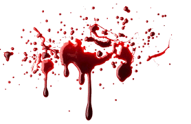 Remove Blood Stain From Carpet by How To Remove Blood Stains From Carpet Dallas Carpet Cleaning