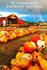 Pumpkin Patch Indiana County Pa by 7 Unbelievable State Parks In Pennsylvania For Hiking State