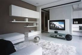 Black Leather Sofa Decorating Ideas by Apartment Modern Decoration Using White Leather Sofa And Black
