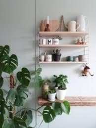 kleines küchen makeover grüne küchenwände regal dekor