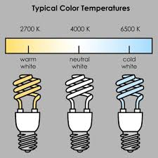 seeing the light what color temperature light bulb should i