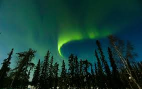 The Northern Lights Young Living Farm
