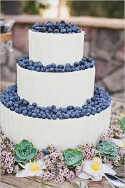 Rustic Wedding Ideas Blueberry Buttercream Cake With Succulent Border