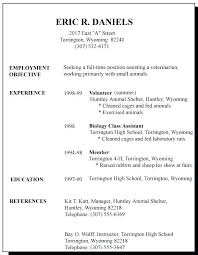 Examples Of Resumes For A Job Excellent Ideas First Resume Time In
