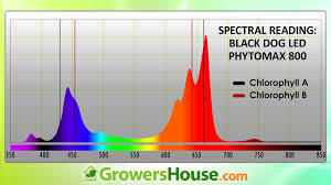 Induction Lamps Vs Led by Black Dog Led Phytomax Led Growlight Text U0026 Review Growers House