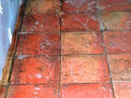 ingrained dirt cleaning and polishing tips for terracotta