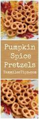 Whole Hog Pumpkin Ale Clone by Best 25 Pretzels Recipe Ideas On Pinterest Soft Pretzels Soft