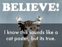 I Know This Sounds Like A Cat Poster But Its True