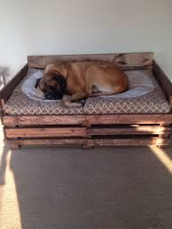 Pottery Barn Dog Bed by Indoor Outdoor Dog Bed Doggy Stuff Pinterest